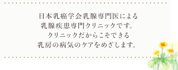 外科 島田 乳腺 スタッフ紹介 乳腺科 順天堂医院